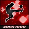 ZOKA1000